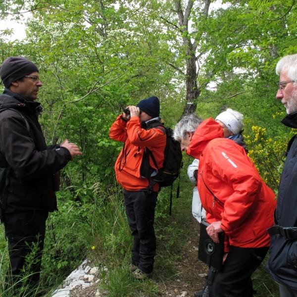 sortie nature à Aspres le 24 mai 2013