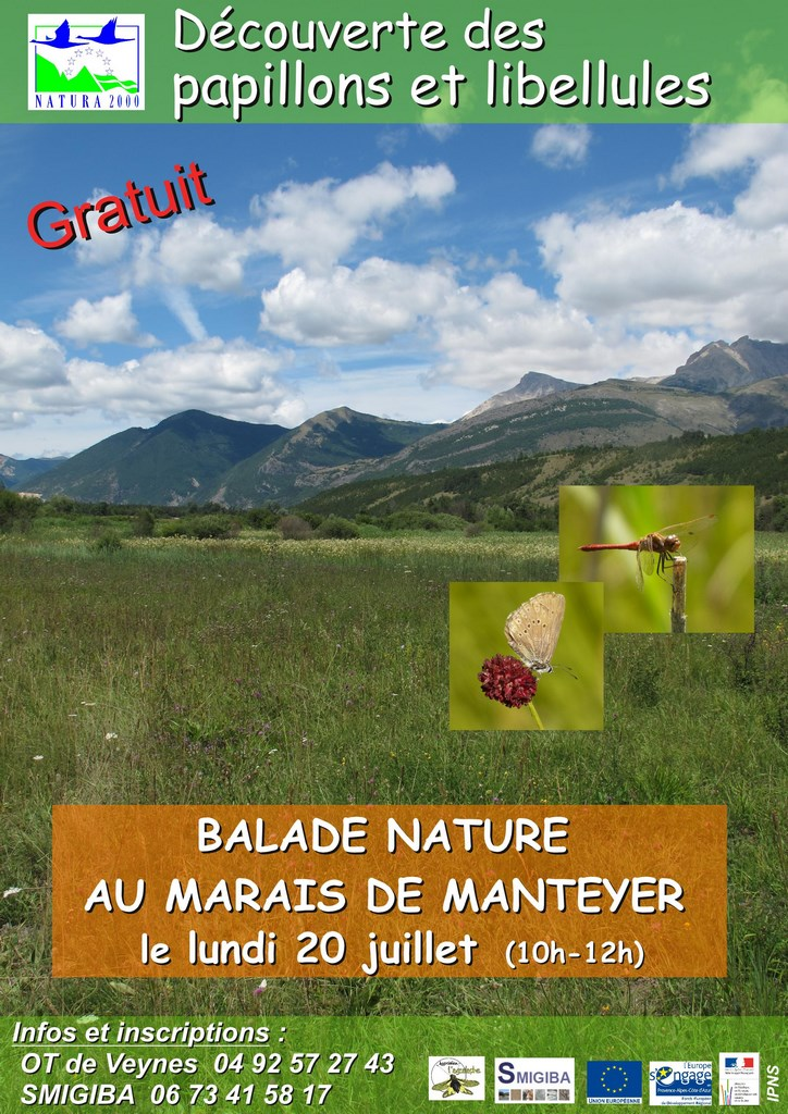 balade_nature_manteyer_papillons_2015-page001 (Copier)