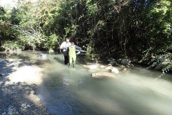 Blaisance pêche électrique avant travaux
