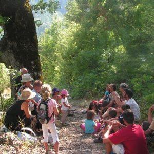 enfants assis en forêt avec un animateur