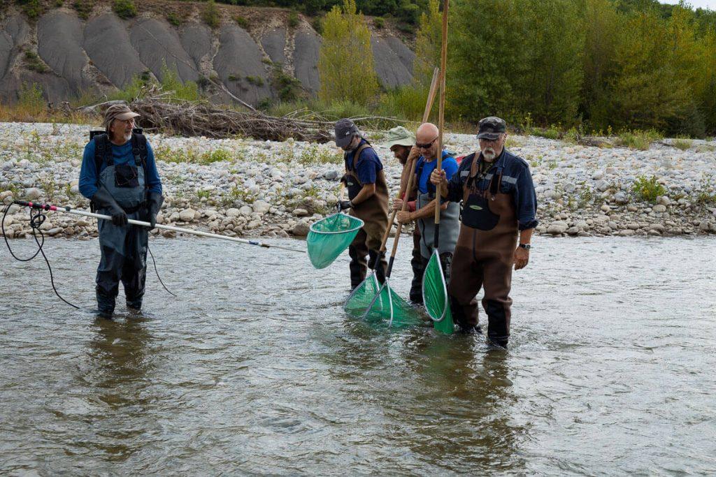 l'équipe de Rémi Chappaz en pêche électrique dans le Buëch aval